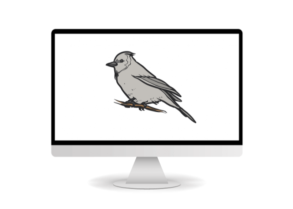 new malware on m1 chip silver sparrow
